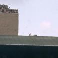 Moderne stadions zijn doorgaans overdekte betonblokken die meer op een ruimteschip lijken dan een voetbaltribune. Om ons te herinneren aan hoe het vroeger was zette TalkSport prachtige foto's van memorabele […]
